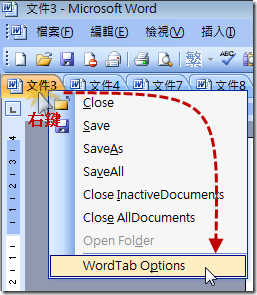 WordTab.GoToOptions