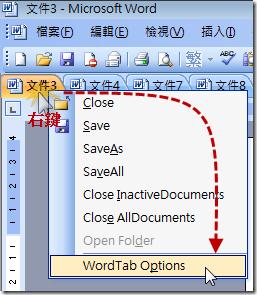 WordTab.GoToOptions