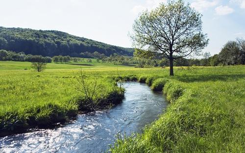 Flusslauf in der Wiese in Bayern, Deutschland